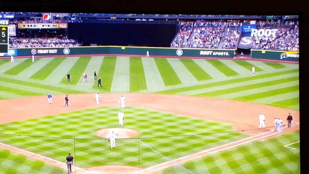 Fan runs onto field during fly ball. Cardinals mariners