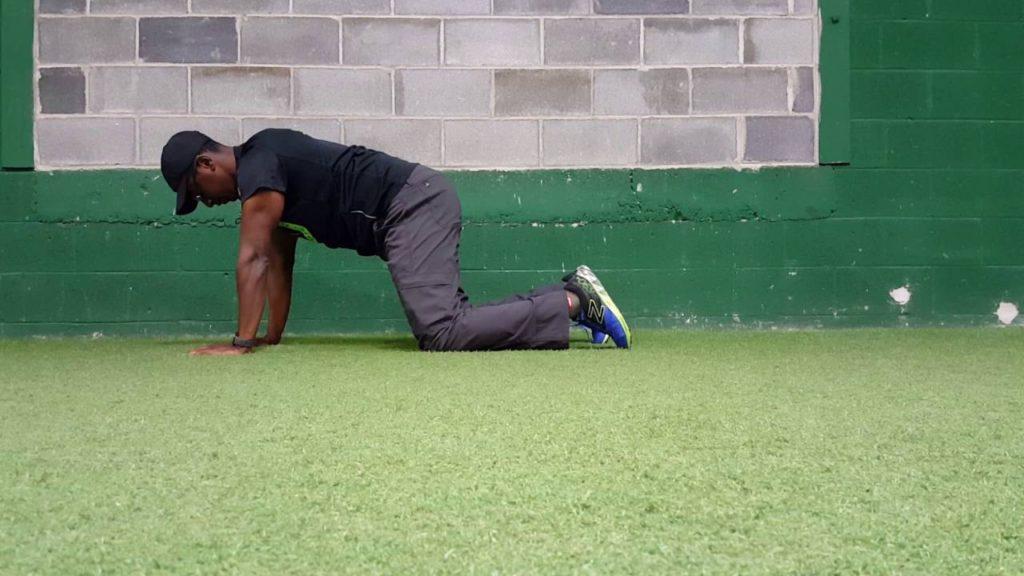 Quadruped Stability Exercises | Hiza Mbwana, PT, DPT