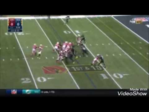 J.J. Nelson Hauls in 134 Receiving Yards & 1 TD vs. Seahawks   NFL Week 16 Player H