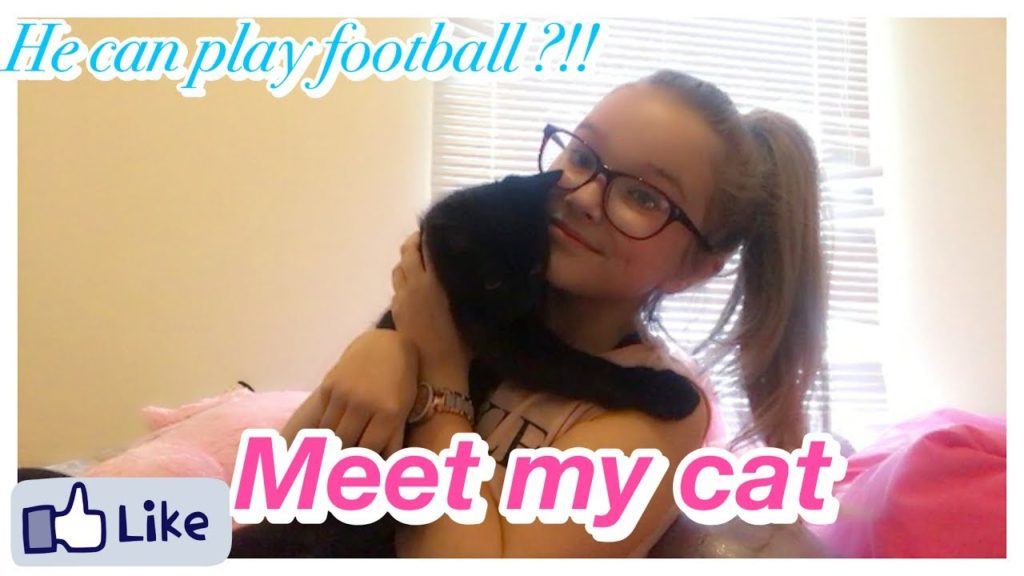 My cat can play football!…Meet Logan