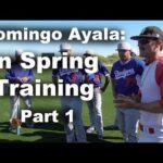 Domingo Ayala in Spring Training Part 1
