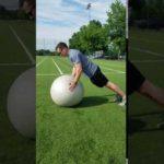 Stability Ball Exercises- SB Push Up